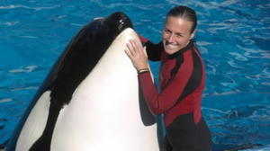 Some ex-trainers say SeaWorld downplays risks of working with killer whales