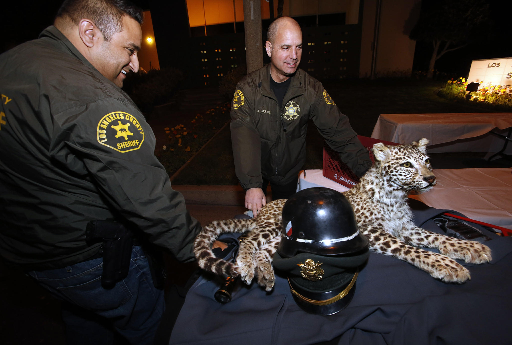 """Detectives Larry Villareal, left, and Josue """"Josh"""" Rodriguez of the Sheriff's Department's Industry Station with the recovered mounted snow leopard."""