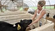 Dairy industry shrinks across Maryland