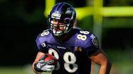 Ravens Q&A: Dennis Pitta