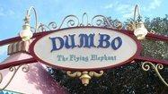 Pictures: Fantasyland's Dumbo -- old, new and times two at Disney World