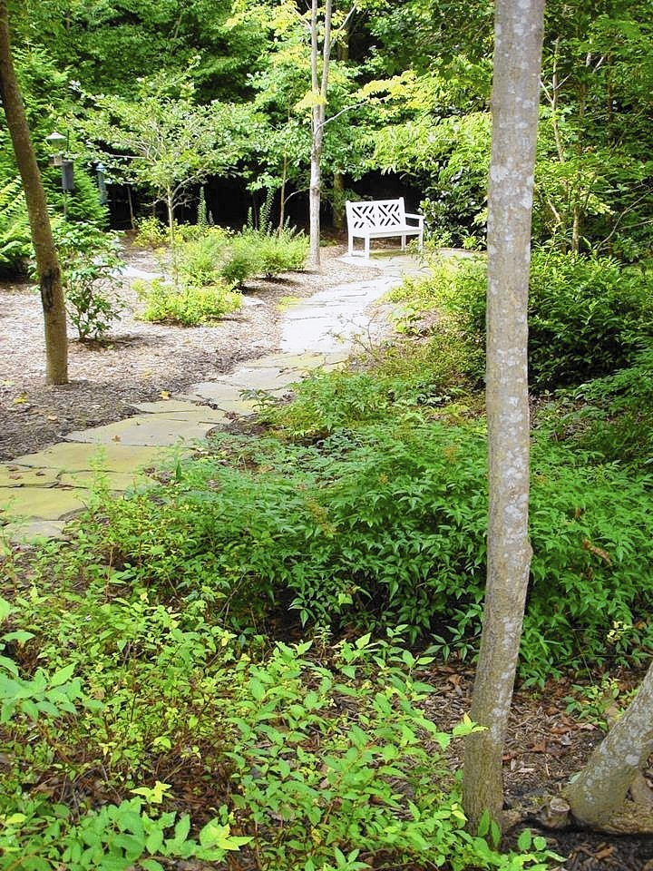 After. A path meanders from the yard and through the woodland area, ending at a bench.