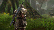 Review: 'Kingdoms of Amalur: Reckoning' blazes its own magical trail