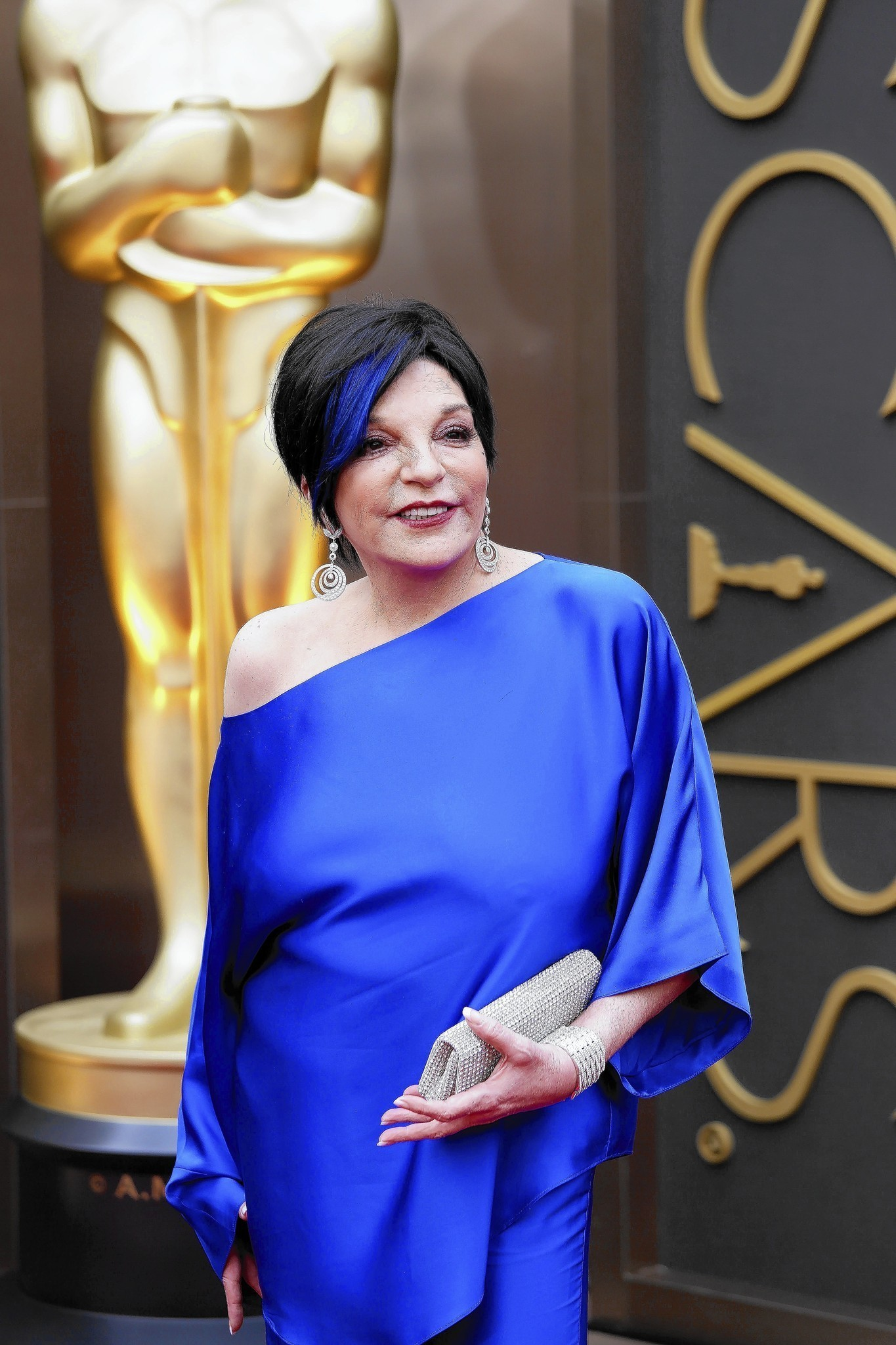 Liza minnelli 39 s wonderful life chicago tribune for House of liza