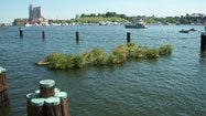 Artificial wetlands to grow in Inner Harbor