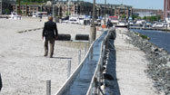 Scientists use algae to scrub harbor water