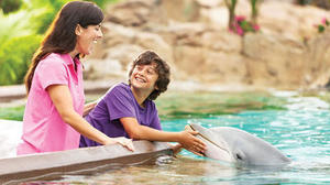 Taking the Kids -- to SeaWorld Orlando
