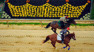 Preakness benefits from slots largesse