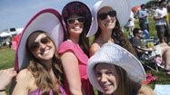 Preakness infield party still raucous, but tamer than years past