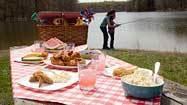 Avoiding picnic pitfalls