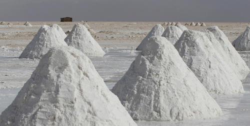 Piles of salt mined by local residents sit on the surface of the world's largest salt flats, the Salar de Uyuni, near the village of Colchani November 20, 2007.
