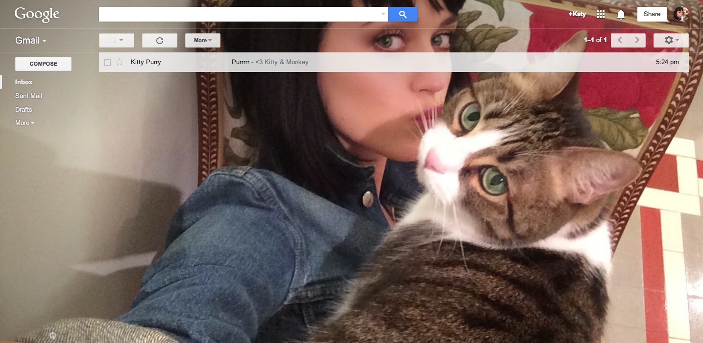 For April Fools' 2014, the Gmail team at Google has introduced Shelfies, shareable selfie pictures that users can set as inbox themes. That part is real, but Gmail's claim that it kicked off the selfie trend in the first place -- not so much.