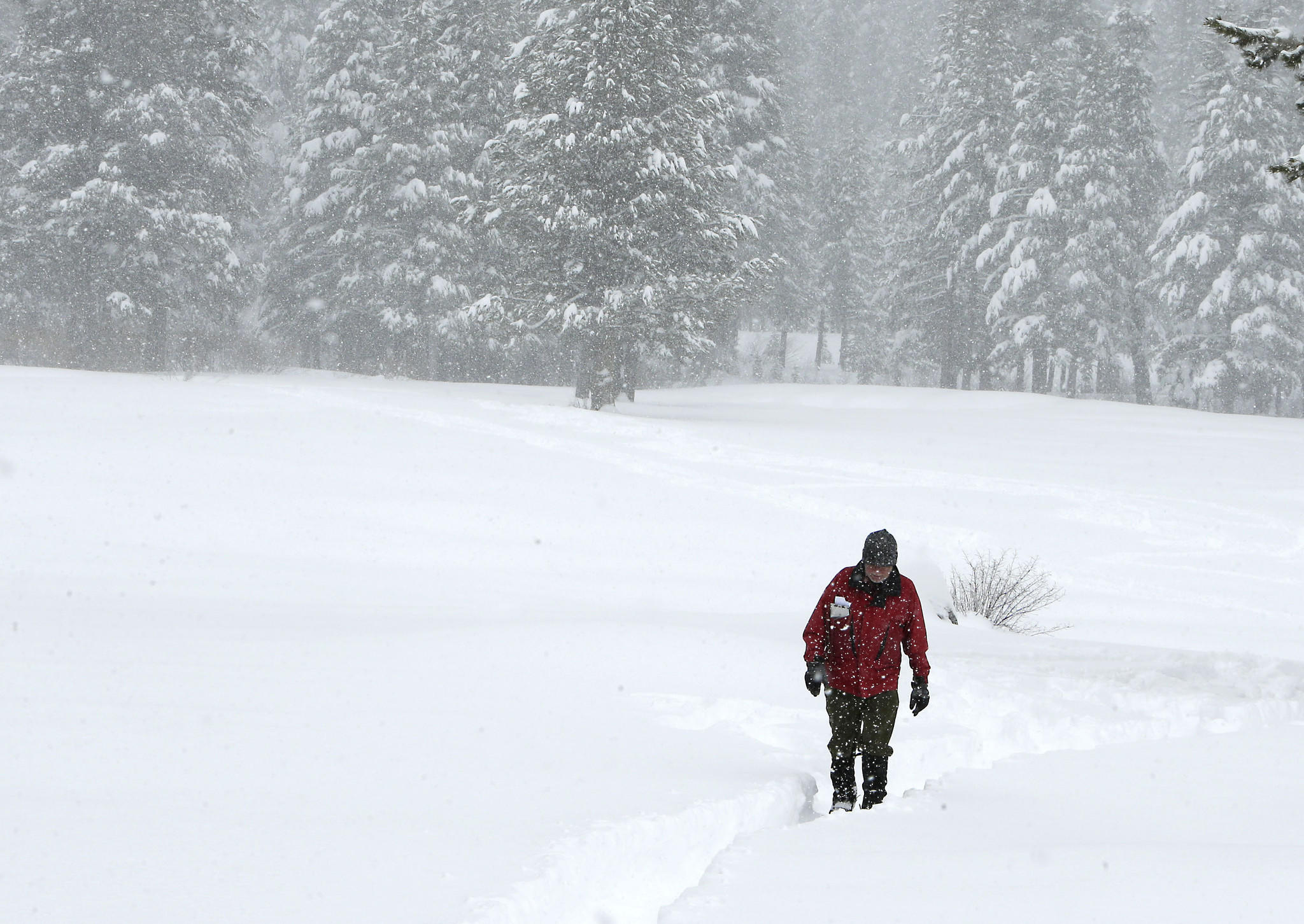 Late winter storms have improved the Sierra Nevada snowpack and helped boost levels of the state's two largest reservoirs. Above, Frank Gehrke, chief of snow surveys for the Department of Water Resources, crosses a snow-covered meadow Tuesday as he returns from conducting the snowpack survey at Echo Summit.
