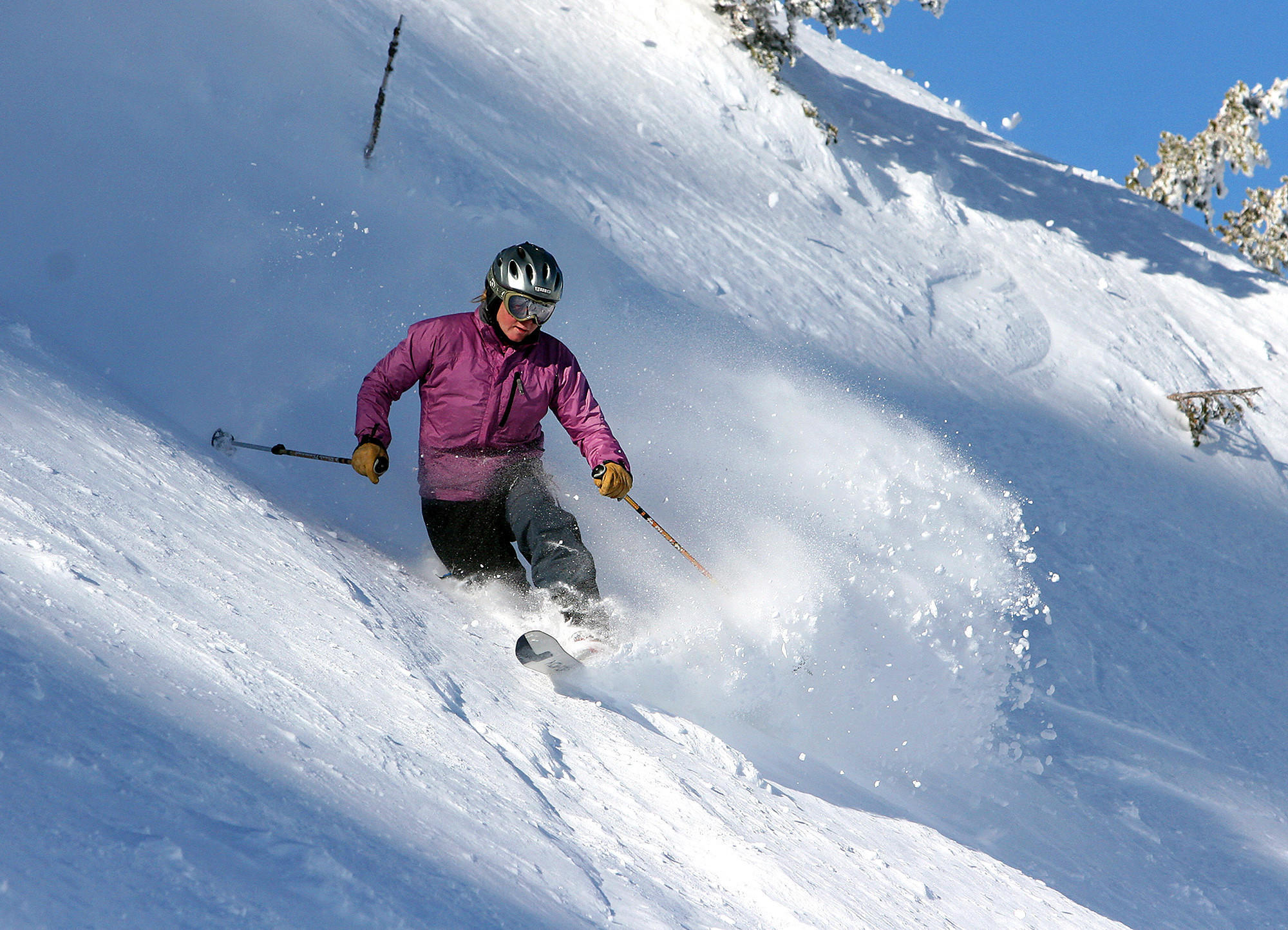 A skier at Alta Ski Area in Utah. The resort has not allowed snowboarders since the 1980s, citing safety and business reasons. But snowboarders are suing to overturn what they argue is an unconstitutional policy.