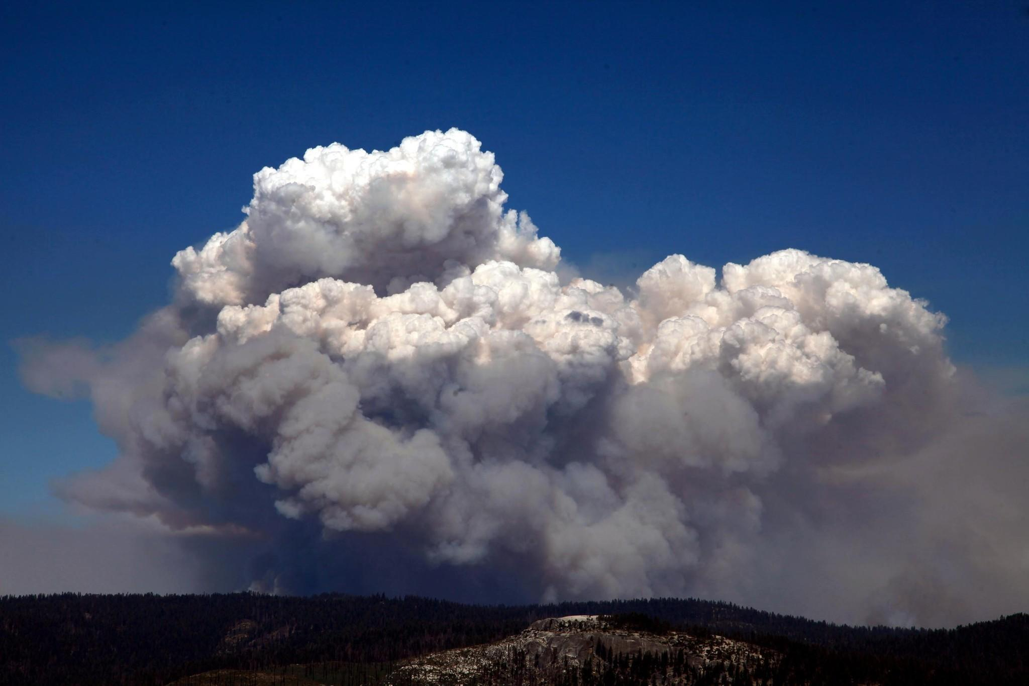 """Last year's massive Rim fire forced the closure of thousands of acres of Yosemite National Park. Areas of the park have been reopened, but park officials cautioned visitors of potential risks such as """"hazardous trees, uneven ground, potential rockfall, and down and dead debris on trails."""""""