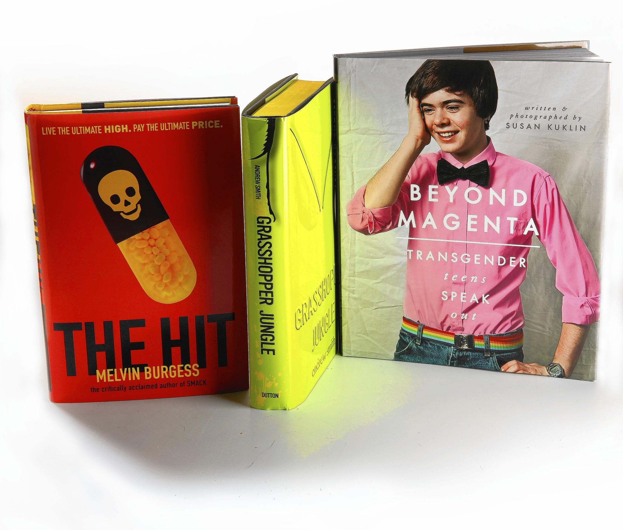 """This week's Young Adult roundup features """"The Hit"""" by Melvin Burgess, """"Grasshopper Jungle"""" by Andrew Smith and """"Beyond Magenta"""" by Susan Kuklin"""