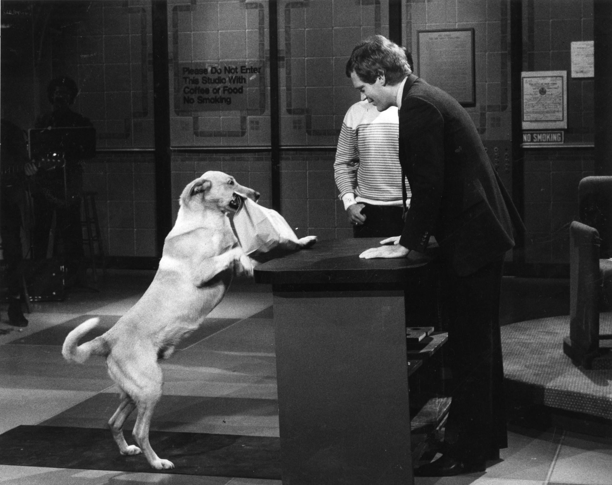 David Letterman Announces His Retirement recommend