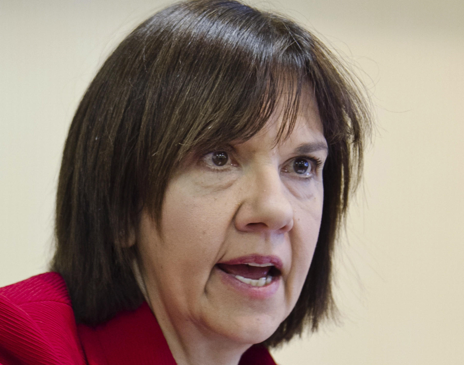 "Cheryl LaFleur, acting chairwoman of the Federal Energy Regulatory Commission, told the Senate Energy Committee that FERC employees were ""wiping and scrubbing all databases"" to protect sensitive information."