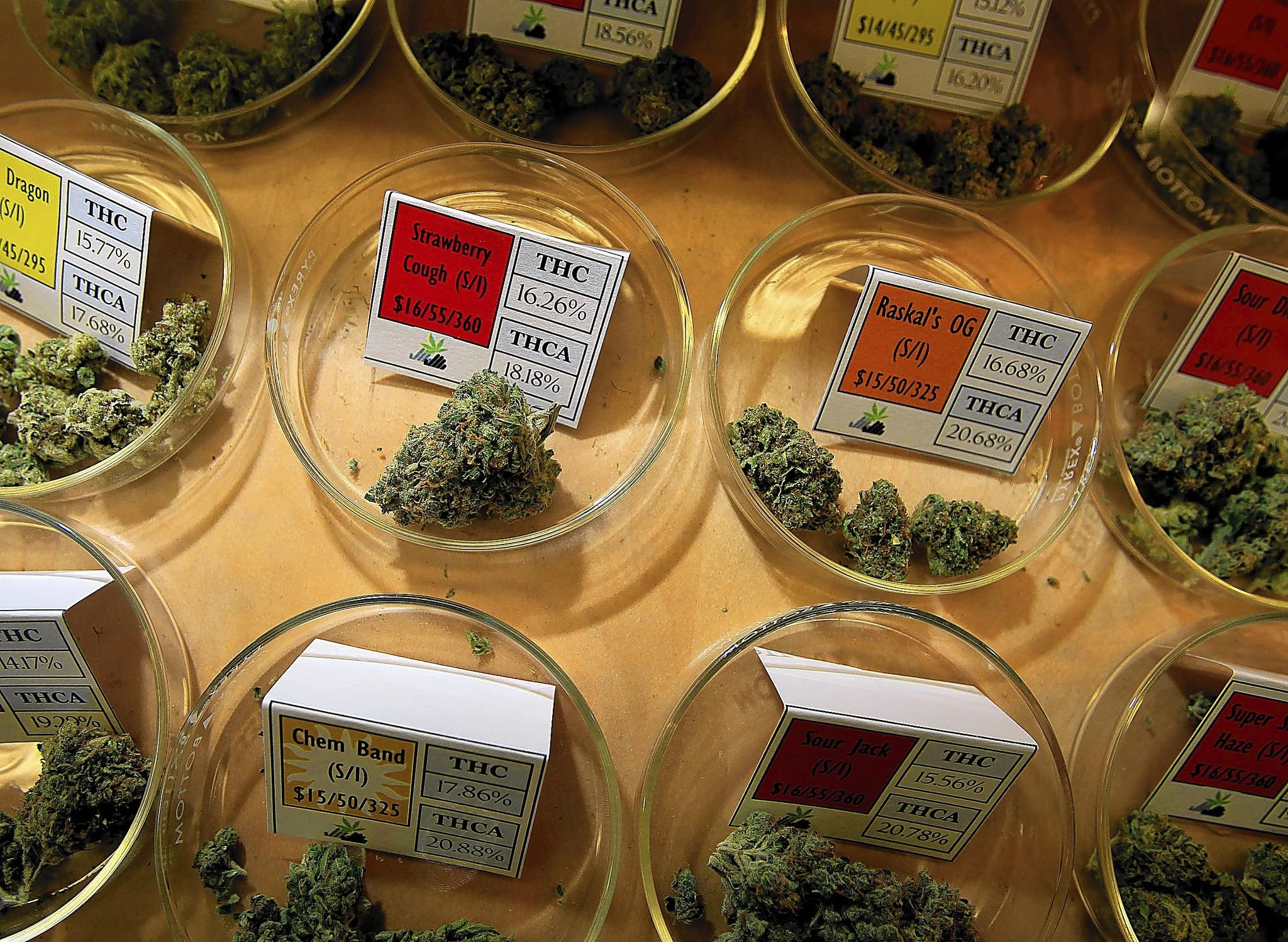 Diferent varieties and strains of marijauna are available for paients at Harborside Health Center, a large medical marijuana dispansary in Oakland, Calif.