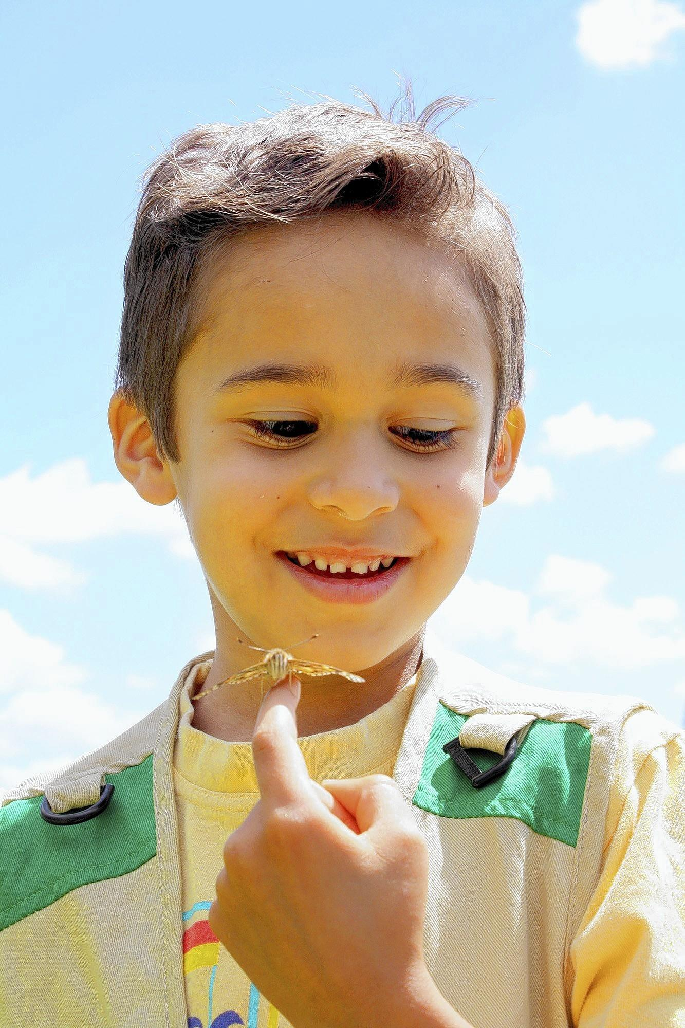 Manny Trujillo gazes in amazement at a butterfly that has landed on his hand during a spring outing to Memorial Park with the Crescenta-Cañada Nursery School.