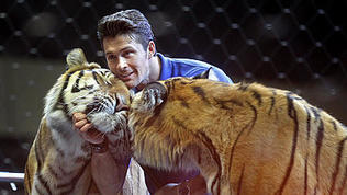 Video: Ringling Bros. big cat show