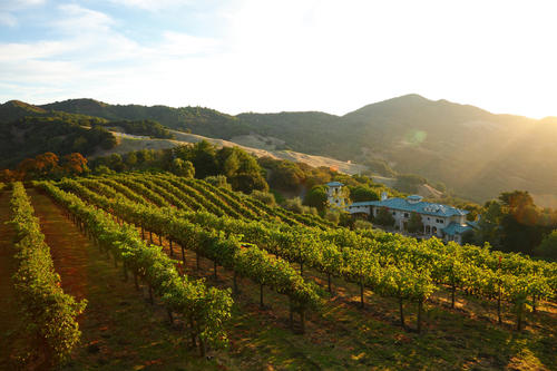 <p>The Napa Valley estate of the late Robin Williams encompasses 640 acres.</p>