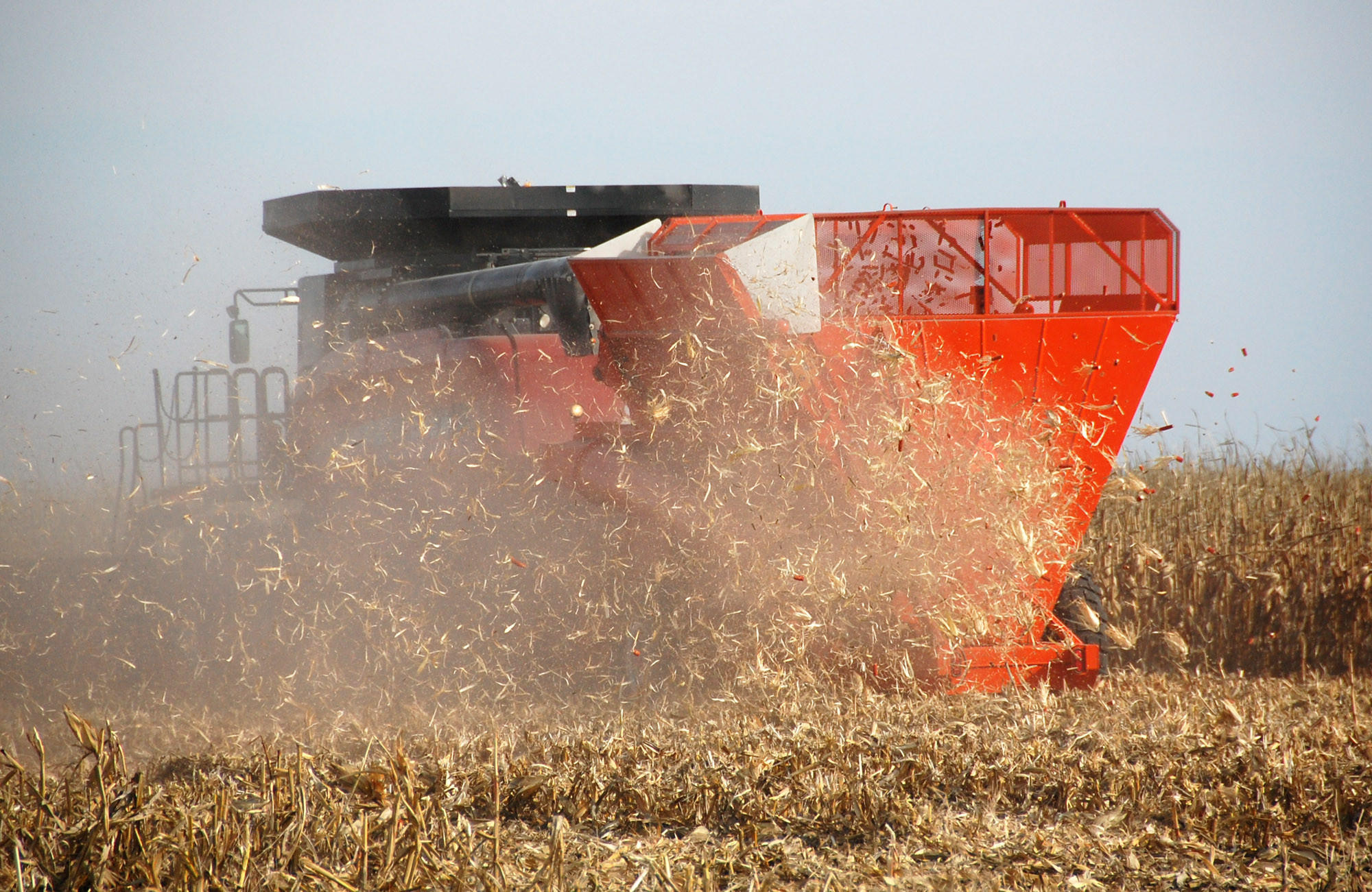 A combine hitched with a Cob Caddy gathers corn and cobs while blowing stover back into the field on a farm in South Dakota. A new report found that biofuels derived from corn stover may actually release more carbon emissions over the short run compared with gasoline.