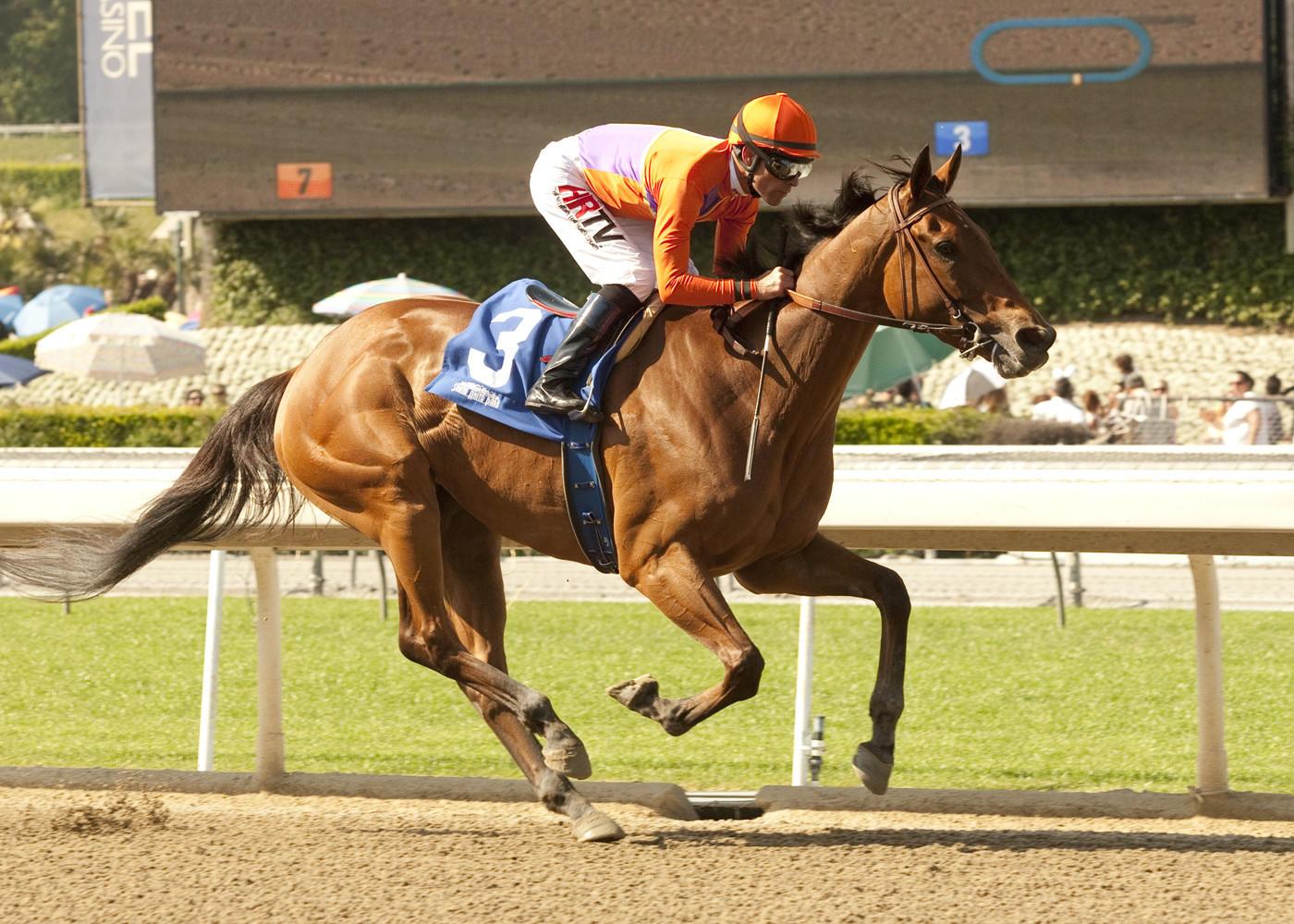 Beholder, with jockey Gary Stevens aboard, wins the $75,000 Santa Lucia Stakes on Sunday at Santa Anita Park.