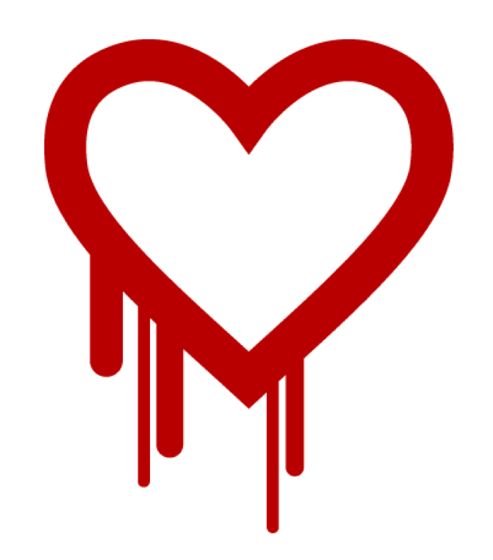A dozen companies have created an initiative to support key open-source projects so that they can avoid security disasters like the one OpenSSL suffered with Heartbleed.