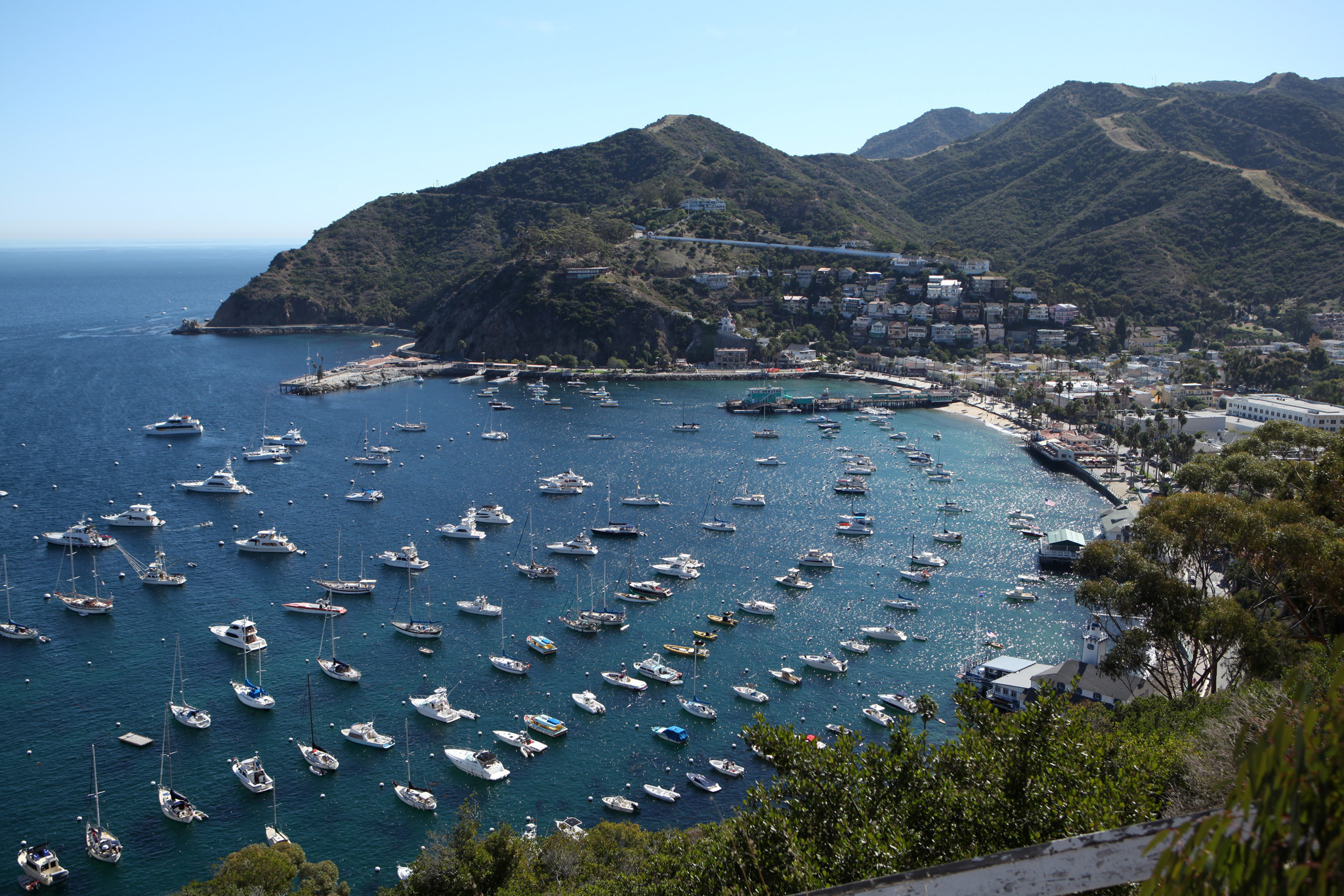 how to get to catalina island from lax
