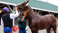 California Chrome and his team took unlikely path to become Kentucky Derby favorites