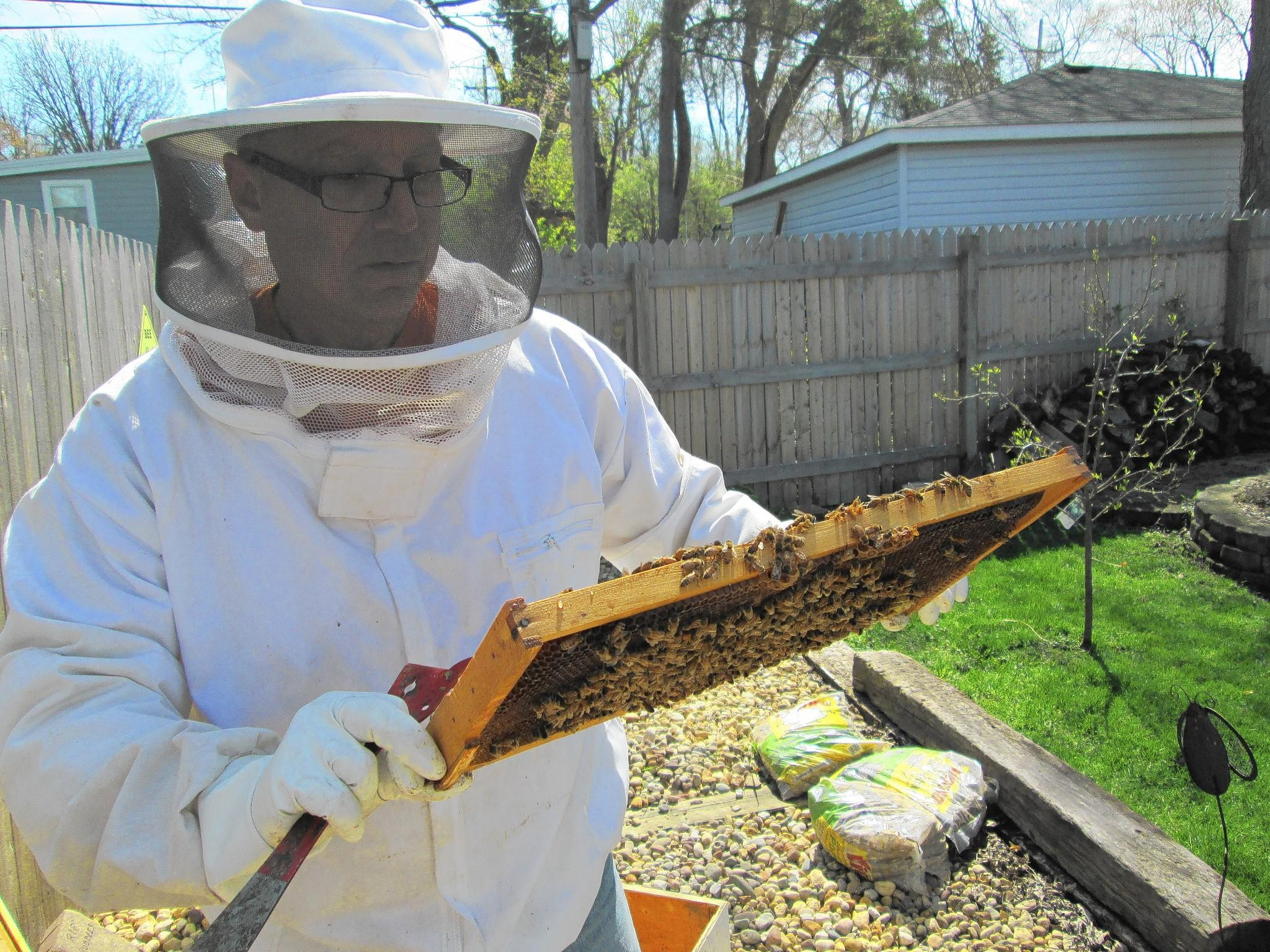 Clarendon Hills Police Chief Ted Jenkins, who is also a member of the Cook-DuPage Beekeepers Association, tends to his beehives at his west suburban home.