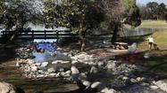 A lakeside hike at Whittier Narrows Recreation Area