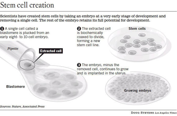 Scientists created embryonic stem cells using a biopsy method that allows an embryo to keep developing.