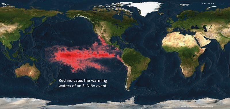 The National Oceanic and Atmospheric Administration (NOAA) image shows the warming waters of an El Nino event in the Pacific Ocean in this image released on July 28, 2010.