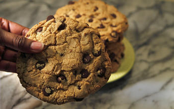 Oven Spoonful's chocolate chip cookies