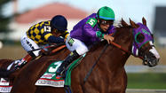 Five storylines to watch for 2014 Preakness Stakes