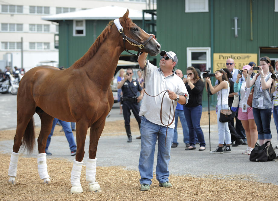 Kentucky Derby winner California Chrome arrives at Pimlico as he is lead off the trailer by assistant trainer Alan Sherman.