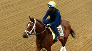Dynamic Impact won't be daunted by No. 1 post position in Preakness