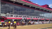 Preak Peek: Pimlico panorama [Video]
