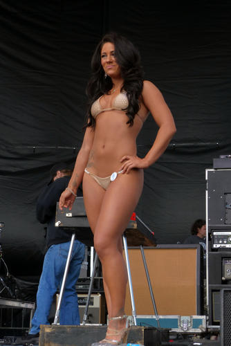 Preakness 2014 Bikini Contest Pictures Dailypress Com