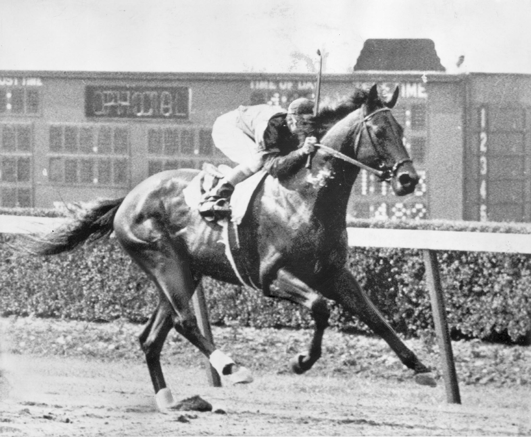 triple crown winners list horse racing