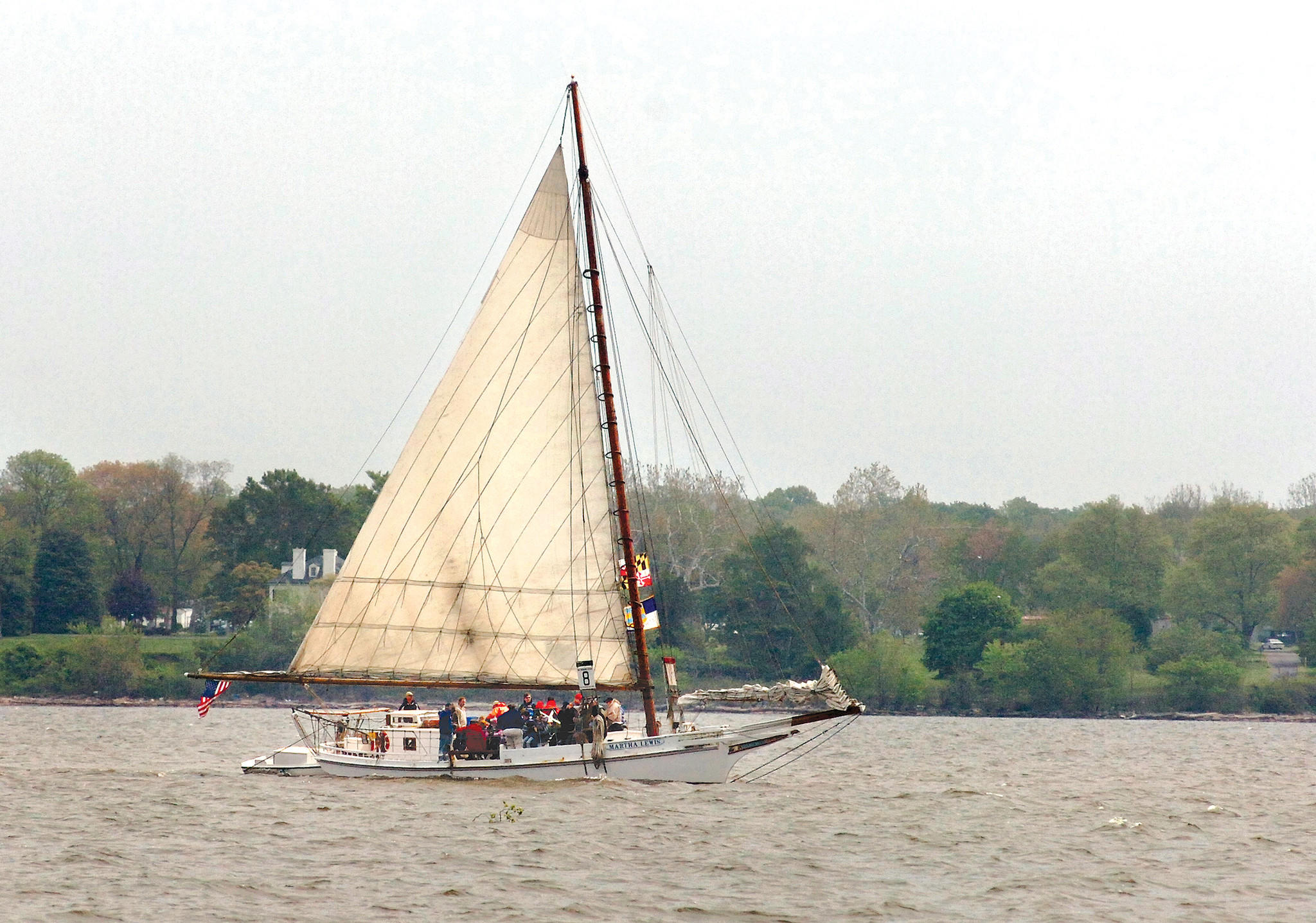 With a strong morning breeze helping them along, the Skipjack Martha Lewis cruises along the Susquehanna flats in 2008.