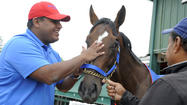Social Inclusion out of Belmont Stakes because of issues with starting gate
