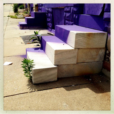 Purple paint covers marble steps in front of abandoned rowhouses on E. Eager Street.