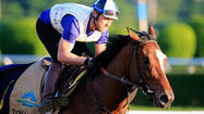 Tonalist owner Robert Evans cherishes Belmont Stakes opportunity