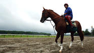 California Chrome's underdog background has made him a favorite