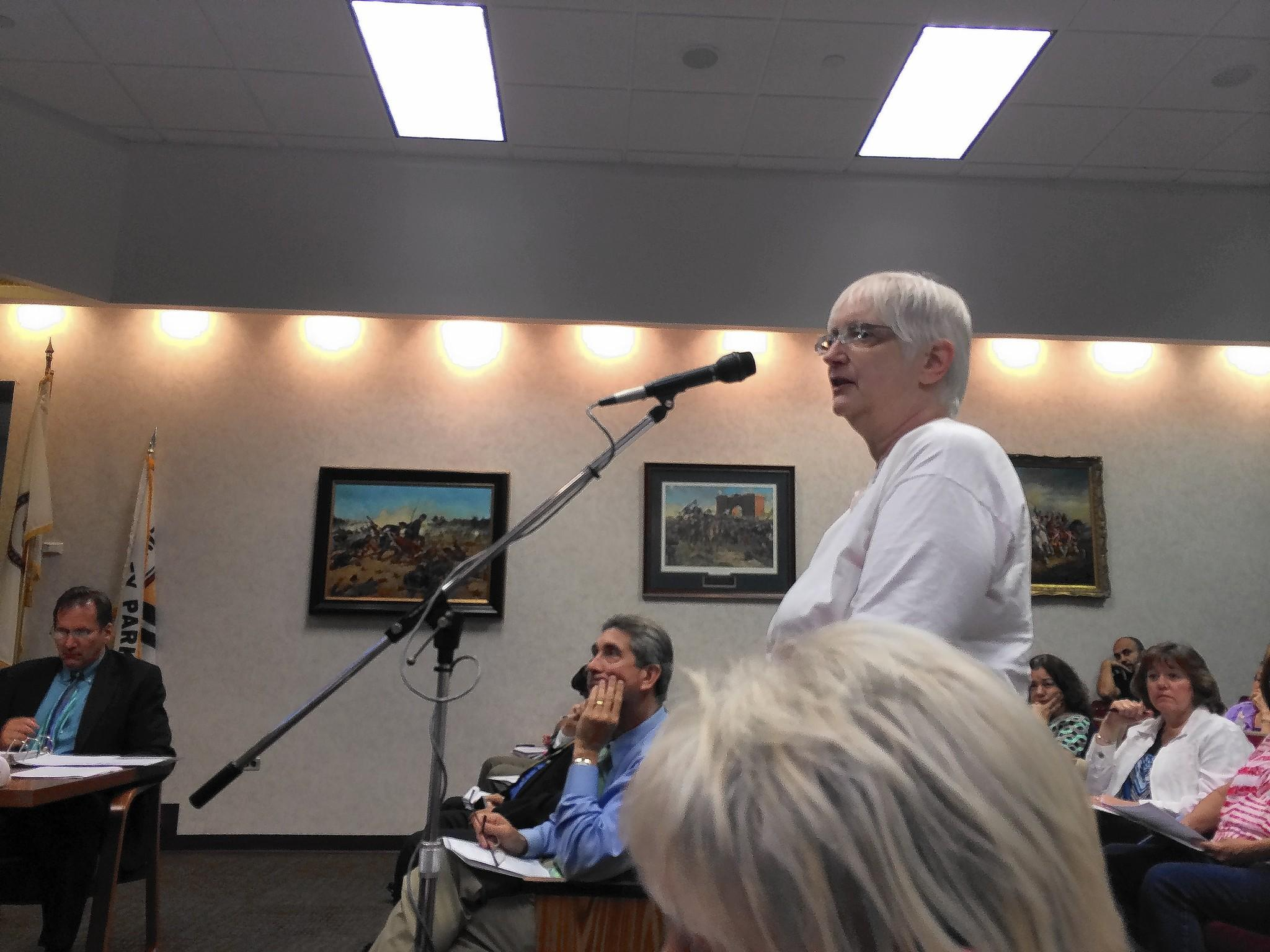 Donna Buckley spoke during a recent meeting against a plan to bring cell phone towers to two Tinley Park schools.