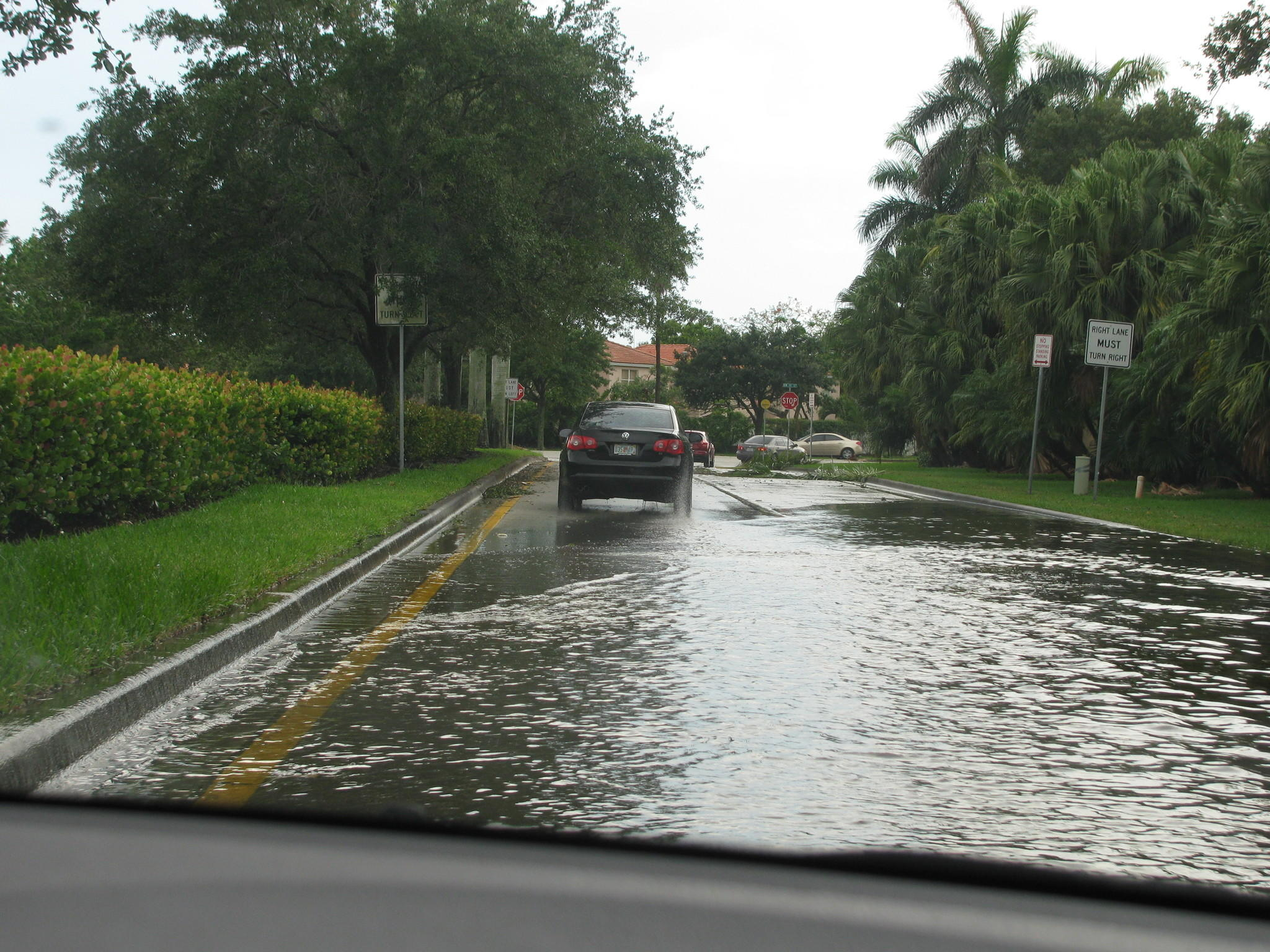 Local streets filled with water, palm fronds and other debris Wednesday afternoon, June 11, in this Pembroke Pines neighborhood when a fast-moving thunderstorm ripped through west Broward County.