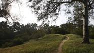 Follow the winding path at Elysian Park